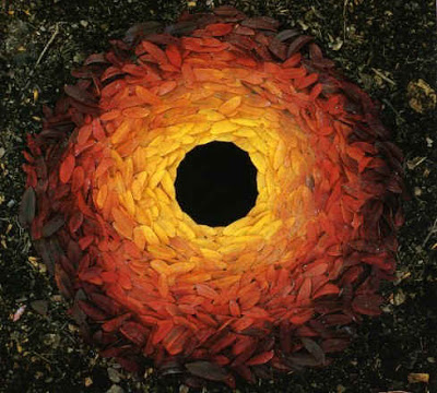 Andy Goldsworthy: rowan leaves with hole